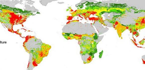 Globale Risikokarte