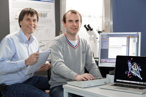 Prof. Christoph Fahlke (links) und Dr. Jan-Philipp Machtens