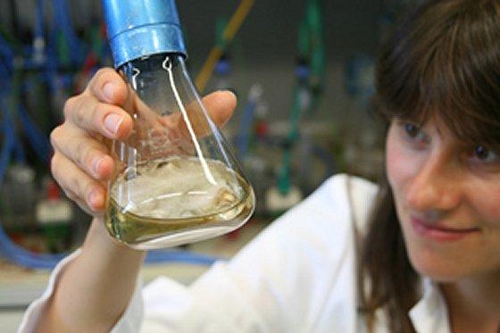 Preis für energieeffiziente Abwasserreinigung auf Biobasis: Mikroschadstoffen mit Enzymen zu Leibe rücken