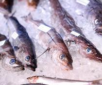 Lebensmittelbetrug: BVL informiert über Food Fraud auf der Internationalen Grünen Woche
