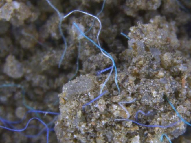 Mikroplastik: Gefahr auch für Böden und Binnengewässer