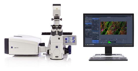 Neue konfokale Technologie macht´s möglich: Superauflösende Mikroskopie