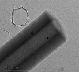 Nanoröhrchen