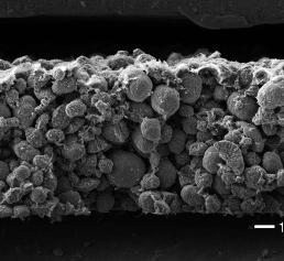 Nickel-Mangan-Cobalt-Akku