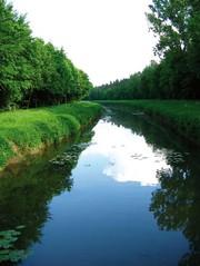 News: Weltwassertag 2011: Saubere Analyse von Trinkwasser sorgt für mehr Lebensqualität