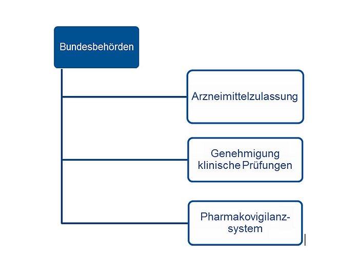 Arzneimittelüberwachung in Deutschland: Teil 2: BfArM und PEI