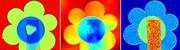 Röntgenphasenkontrast-Technik vereinfacht: Verbesserte Bildgebung durch spezielle Streuung