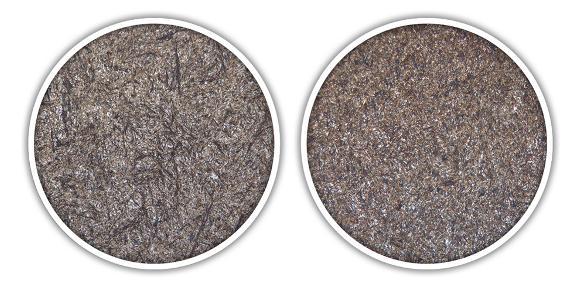 Schaeffler Mancrodur carbonitriert