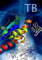 """Life Sciences Innovations: Den Tricks der Tuberkulose-Bakterien auf der Spur: Struktur und Dynamik eines """"Helfer-Proteins"""" aufgeklärt"""