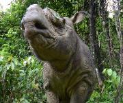 Tumore behindern die Fortpflanzung von im Freiland lebenden Sumatra-Nashörnern (Dicerorhinus sumatrensis). (Foto: Ben Jastram / IZW)