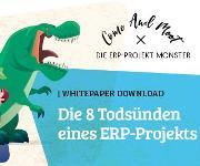Die 8 Todsünden eines ERP-Projekts