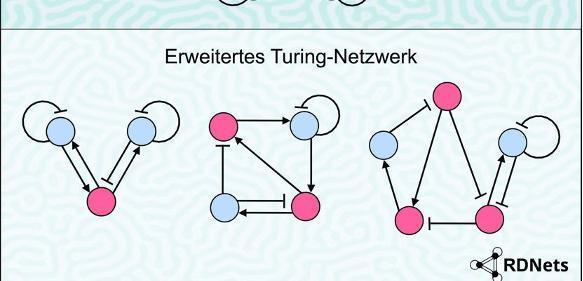 Turing-Netzwerk