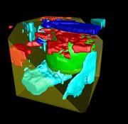 Suite-Software: Für Raman-, AFM- und SNOM-Analysen