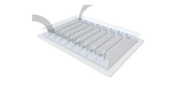 mikrofabrizierte Kammer