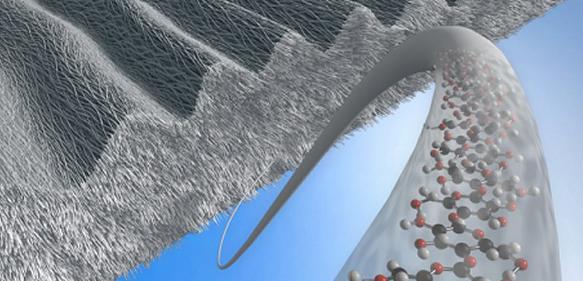 mikrostrukturierte Zellulose