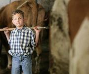 Allergieprävention: Wie Katze und Kuh vor Asthma schützen