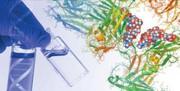 News: AMSBIO setzt sich für die glykobiologische Forschung ein