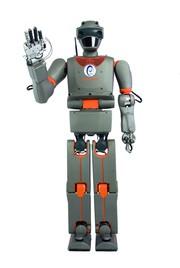 Getriebe-Einbausätze; Humanoider Roboter REEM-B: Sein Name ist REEM-B