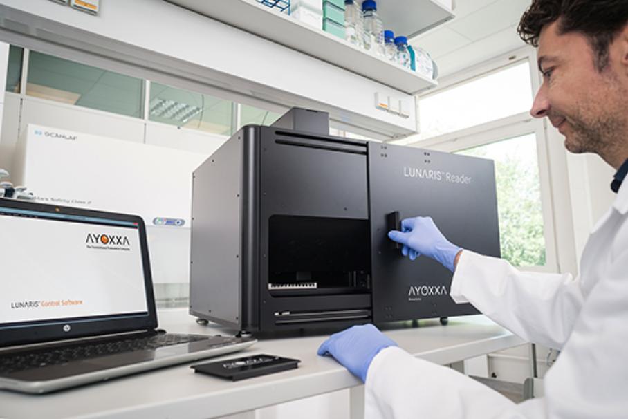Multiplex-Proteindetektion: Nachweis und Quantifizierung biologischer Marker