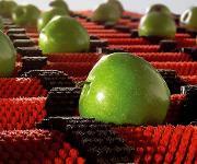 Unter anderem Lebensmittelkontakt ist mit speziellen PA-Werkstoffen für die Extrusion möglich. (Bild;: Radicigroup)