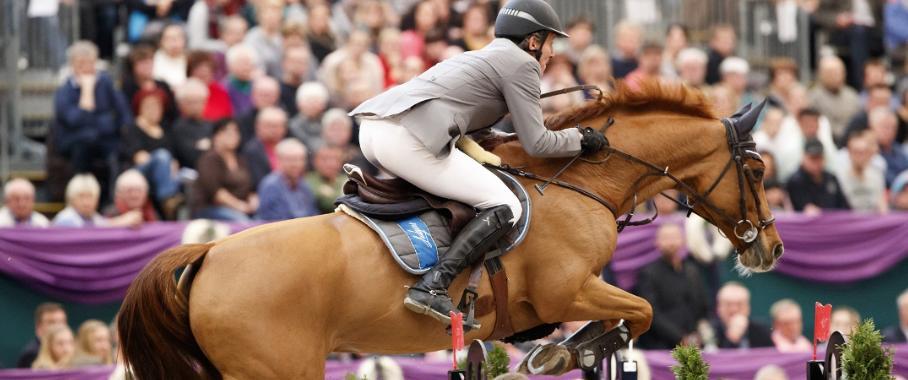 Ein neuartiges Mundstück aus thermoplastischen Elastomeren soll die Kommunikation zwischen Reiter und Pferd verbessern. (Bild: Beris)