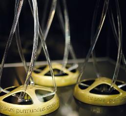 Die Trophäen der Purmundus Challenge werden im November 2017 verliehen.