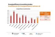 Erster Energieeffizienz-Index:: Zu wenig, zu klein, zu hoch
