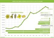 Anbau nachwachsender Rohstoffe 2013: Knapp unter Vorjahresniveau