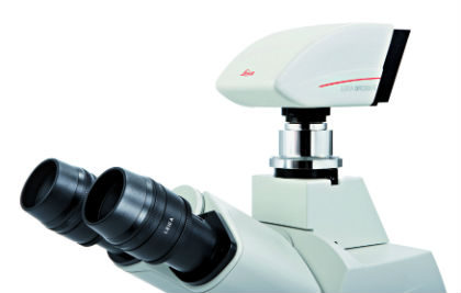 Mikroskopie und Bildauswertung: Leica Microsystems stellt zwei neue Mikroskopkameras vor
