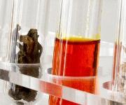 Biobasiert – hinsichtlich Ausgangsmaterialien und Prozesstechnik – sollen Kunststoffe sein, die sich auch mit hoher Transparenz produzieren lassen. (Bild: Fraunhofer IGB)