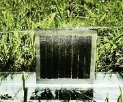 Das Konzept ist für jede Dünnschicht-Photovoltaik-Technologie und verschiedene Elektrolysearten anwendbar. Copyright: Forschungszentrum Jülich