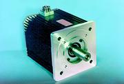 Werkstoffe (WS),: AC-Servoantriebe