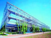 Seilnetz-Architektur: Leichtbau mit Stahlnetz
