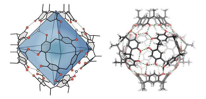 Molekulare Kapsel