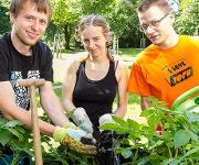 Junge Gärtner an der TU Chemnitz