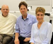 Prof. Wolfgang Brück, Direktor Institut für Neuropathologie UMG, Prof. Fred Wouters, Labor für Molekulare und Zelluläre Systeme, Dr. Gertrude Bunt