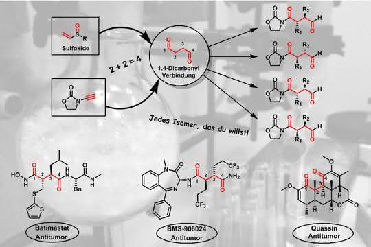 Selektive Synthese von 1,4-Dicarbonylverbindungen mit Sulfoxiden sowie bedeutende Wirkstoffvertreter, die die 1,4-Dicarbonyleinheit enthalten.
