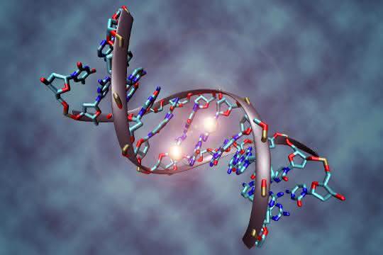 Ein methyliertes DNA-Molekül. Epigenetische Veränderungen spielen eine Rolle beim Fortschreiten des Glioblastoms.