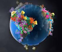 Weltkugel mit Bodenbakterien und Pilzen