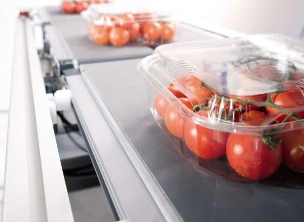 Kiwis und Cherry-Tomaten präzise portioniert