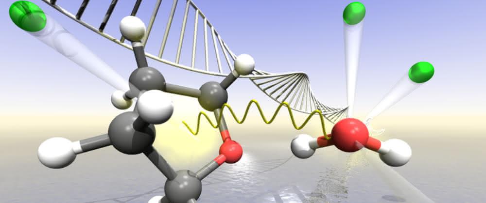 Strahlenbiologie: Wasser verstärkt Strahlenschäden