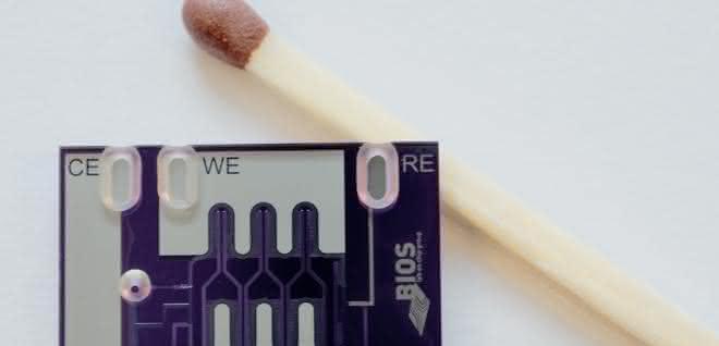 Chip im Größenvergleich