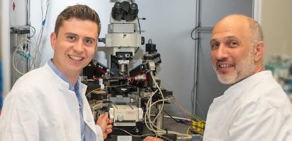 Bild aus dem Labor für Experimentelle Epileptologie und Kognitionsforschung der Universität Bonn