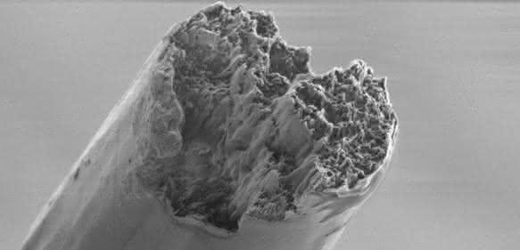 Rasterelektronenmikroskop-Aufnahme der fertigen Fasern.