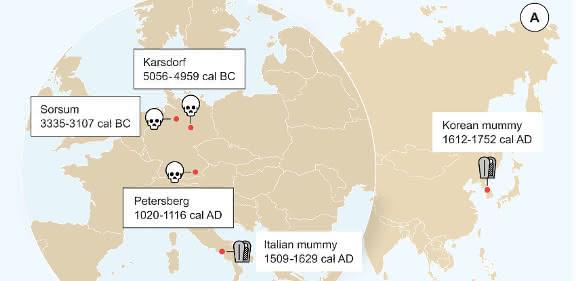 Karte mit eingezeichneten Fundstellen von Personen mit Hepatitis-B-Infizierung