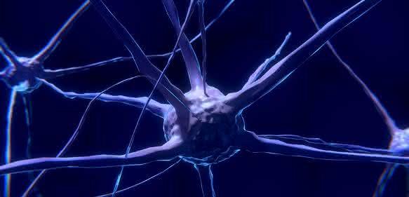 Schematische Darstellung Nervenzellen