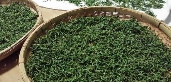 Teeblätter im Korb