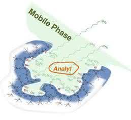 Schematische Darstellung einer Pore eines LC-Partikels