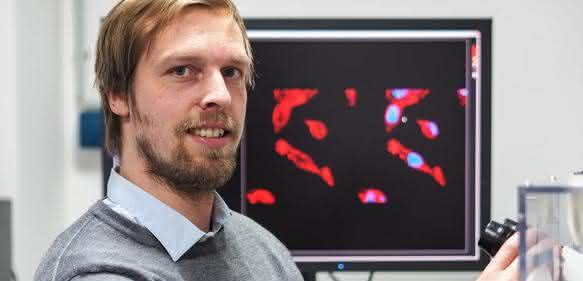Forschungsgruppenleiter Sander Bekeschus beim Mikroskopieren von Tumorzellen
