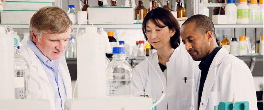 Prof. Schüth, Dr. Sakaguchi-Söder und Doktorand Abrha (v.l.)